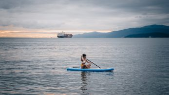 Transportation And Maintenance Tips To Take Care Of Your Paddle Board