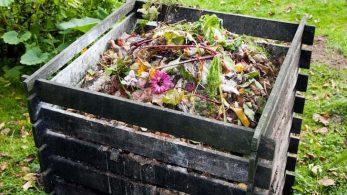 Best ways to manage your garden waste